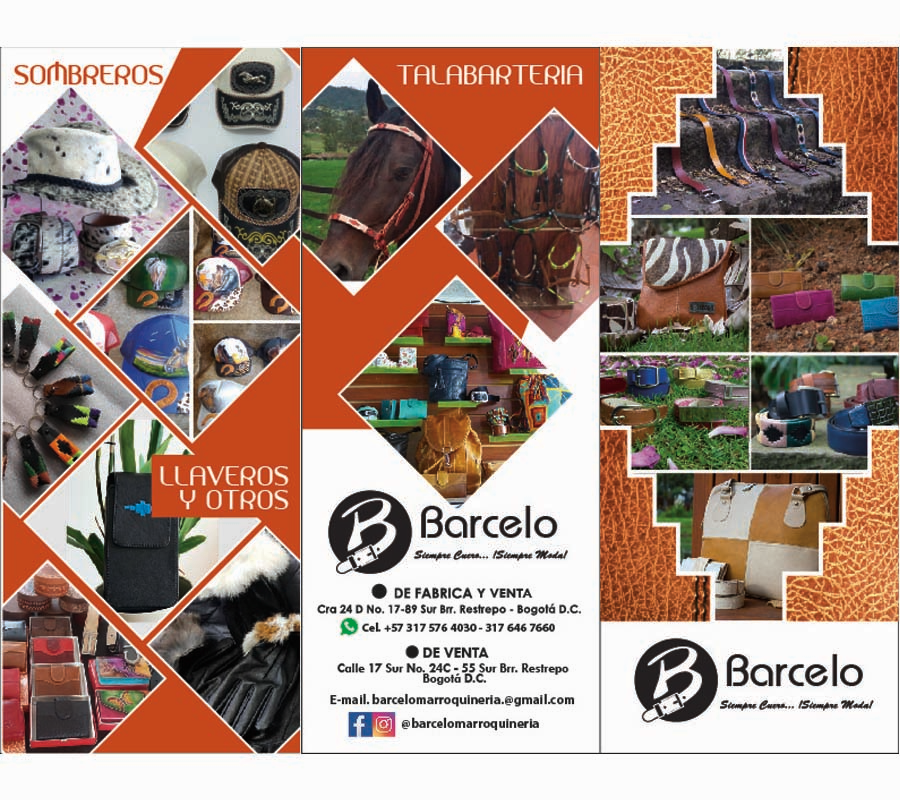 Diseño Brochure